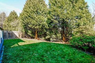 Photo 18: 8240 132A Street in Surrey: Queen Mary Park Surrey House for sale : MLS®# R2354112