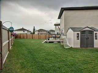 Photo 3: 11717 18A Avenue in Edmonton: Zone 55 House for sale : MLS®# E4163929