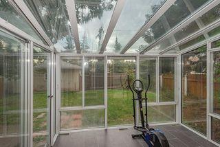 Photo 28: 3623 111A Street in Edmonton: Zone 16 House for sale : MLS®# E4169036