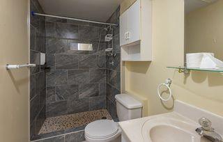 Photo 26: 3623 111A Street in Edmonton: Zone 16 House for sale : MLS®# E4169036