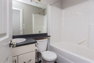 Photo 17:  in Edmonton: Zone 30 House for sale : MLS®# E4170151
