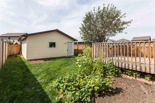 Photo 20:  in Edmonton: Zone 30 House for sale : MLS®# E4170151