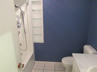 Photo 7: 14407 87 Street in Edmonton: Zone 02 House for sale : MLS®# E4198577