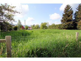 Photo 3: 48878 CHILLIWACK CENTRAL Road in Chilliwack: East Chilliwack House for sale : MLS®# H1401931