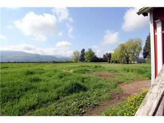 Photo 8: 48878 CHILLIWACK CENTRAL Road in Chilliwack: East Chilliwack House for sale : MLS®# H1401931