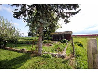 Photo 11: 48878 CHILLIWACK CENTRAL Road in Chilliwack: East Chilliwack House for sale : MLS®# H1401931