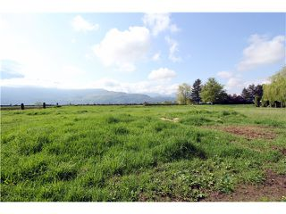 Photo 9: 48878 CHILLIWACK CENTRAL Road in Chilliwack: East Chilliwack House for sale : MLS®# H1401931
