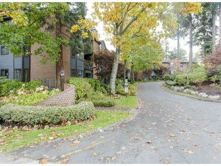 "Photo 20: 316 15300 17TH Avenue in Surrey: King George Corridor Condo for sale in ""Cambridge II"" (South Surrey White Rock)  : MLS®# F1425325"