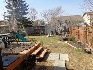Photo 18: 119 Bernadine Crescent in WINNIPEG: Westwood / Crestview Residential for sale (West Winnipeg)  : MLS®# 1509123