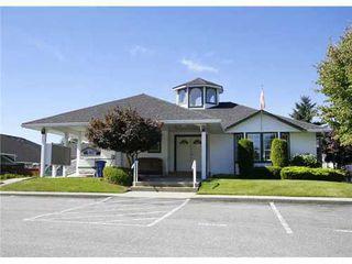 Photo 10: 33 20554 118TH Ave in Maple Ridge: Southwest Maple Ridge Home for sale ()  : MLS®# V994024