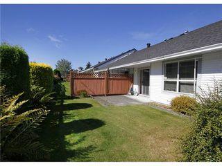 Photo 2: 33 20554 118TH Ave in Maple Ridge: Southwest Maple Ridge Home for sale ()  : MLS®# V994024