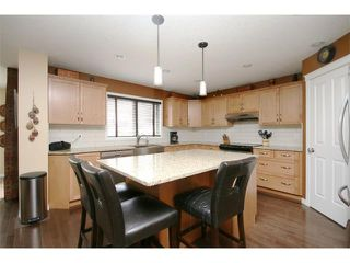 Photo 14: 172 JUMPING POUND Terrace: Cochrane House for sale : MLS®# C4015878