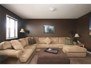 Photo 16: 172 JUMPING POUND Terrace: Cochrane House for sale : MLS®# C4015878