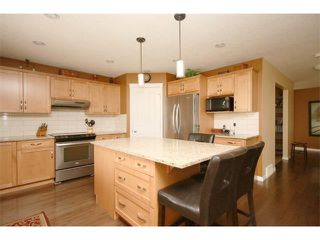 Photo 13: 172 JUMPING POUND Terrace: Cochrane House for sale : MLS®# C4015878