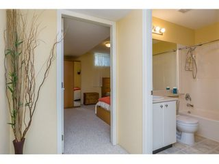 Photo 17: 10274 242B Street in Maple Ridge: Albion House for sale : MLS®# R2039833