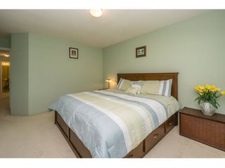 Photo 11: 10274 242B Street in Maple Ridge: Albion House for sale : MLS®# R2039833