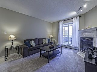 Photo 9: 302 30 SIERRA MORENA Mews SW in Calgary: Signal Hill Condo for sale : MLS®# C4062725