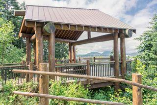 "Photo 43: 1464 OSPREY Place in Agassiz: Mt Woodside House for sale in ""HARRISON HIGHLANDS"" (Harrison Mills)  : MLS®# R2074494"