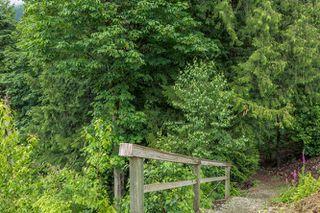 "Photo 36: 1464 OSPREY Place in Agassiz: Mt Woodside House for sale in ""HARRISON HIGHLANDS"" (Harrison Mills)  : MLS®# R2074494"