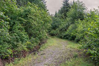 "Photo 37: 1464 OSPREY Place in Agassiz: Mt Woodside House for sale in ""HARRISON HIGHLANDS"" (Harrison Mills)  : MLS®# R2074494"