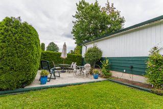Photo 14: 20948 117 Avenue in Maple Ridge: Southwest Maple Ridge House for sale : MLS®# R2083331