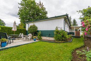 Photo 13: 20948 117 Avenue in Maple Ridge: Southwest Maple Ridge House for sale : MLS®# R2083331