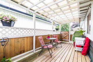 Photo 10: 20948 117 Avenue in Maple Ridge: Southwest Maple Ridge House for sale : MLS®# R2083331