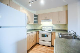 """Photo 8: 317 6359 198 Street in Langley: Willoughby Heights Condo for sale in """"ROSEWOOD"""" : MLS®# R2085416"""