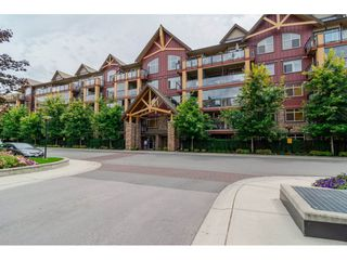 """Main Photo: 232 8288 207A Street in Langley: Willoughby Heights Condo for sale in """"Yorkson Creek"""" : MLS®# R2092253"""