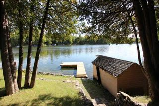 Photo 15: 6 Cardinal Drive in Kawartha Lakes: Rural Eldon House (Backsplit 3) for sale : MLS®# X3609146