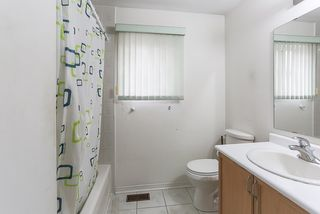 Photo 16: 127 Mint Leaf Boulevard in Brampton: Sandringham-Wellington House (2-Storey) for lease : MLS®# W3712722