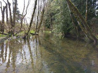 Photo 4: 6821 FARNHAM ROAD in MERVILLE: CV Merville Black Creek House for sale (Comox Valley)  : MLS®# 758027