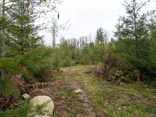 Photo 16: 6821 FARNHAM ROAD in MERVILLE: CV Merville Black Creek House for sale (Comox Valley)  : MLS®# 758027