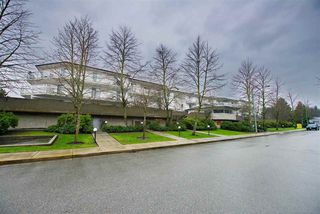 "Photo 18: 110 3051 AIREY Drive in Richmond: West Cambie Condo for sale in ""BRIDGEPORT COURT"" : MLS®# R2233165"