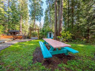 Photo 14: 1421 MARGARET Road: Roberts Creek House for sale (Sunshine Coast)  : MLS®# R2243186