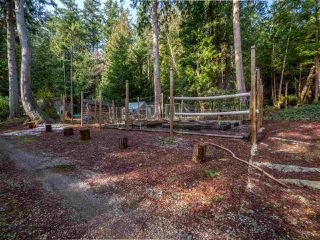 Photo 16: 1421 MARGARET Road: Roberts Creek House for sale (Sunshine Coast)  : MLS®# R2243186