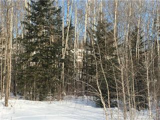 Photo 5: 87 Fred Jeschke Drive in Lac Du Bonnet RM: Granite Hills Residential for sale (R28)  : MLS®# 1806932
