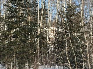 Photo 3: 87 Fred Jeschke Drive in Lac Du Bonnet RM: Granite Hills Residential for sale (R28)  : MLS®# 1806932