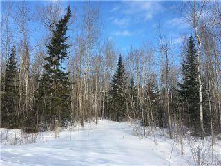 Photo 2: 87 Fred Jeschke Drive in Lac Du Bonnet RM: Granite Hills Residential for sale (R28)  : MLS®# 1806932