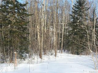 Photo 4: 87 Fred Jeschke Drive in Lac Du Bonnet RM: Granite Hills Residential for sale (R28)  : MLS®# 1806932