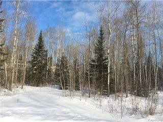 Photo 7: 87 Fred Jeschke Drive in Lac Du Bonnet RM: Granite Hills Residential for sale (R28)  : MLS®# 1806932