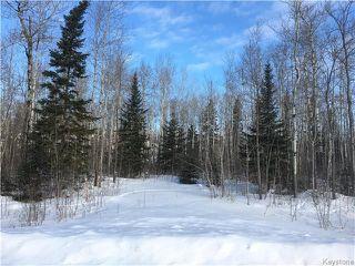 Photo 1: 87 Fred Jeschke Drive in Lac Du Bonnet RM: Granite Hills Residential for sale (R28)  : MLS®# 1806932