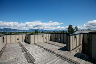 Photo 20: 3722 PUGET Drive in Vancouver: Arbutus House for sale (Vancouver West)  : MLS®# R2282793
