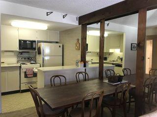 Photo 17: 403B 21000 ENZIAN Way in Mission: Hemlock Condo for sale : MLS®# R2326292