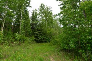 Main Photo: RgeRd 34 Highway 633: Rural Lac Ste. Anne County Rural Land/Vacant Lot for sale : MLS®# E4142649