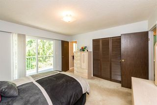 Photo 12: 1162 EAGLERIDGE Drive in Coquitlam: Eagle Ridge CQ House for sale : MLS®# R2340158