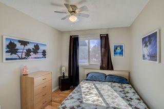 Photo 12: 4428 50 Avenue: Cold Lake House for sale : MLS®# E4149241