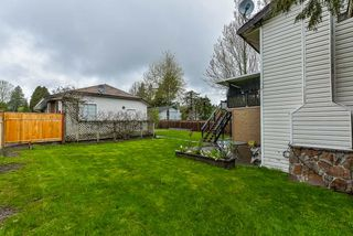 Photo 19: 8779 164 Street in Surrey: Fleetwood Tynehead House for sale : MLS®# R2358497