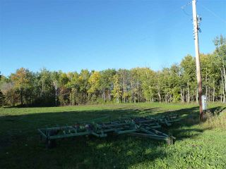 Photo 2: Hwy 827 Twp Road 610: Rural Thorhild County Rural Land/Vacant Lot for sale : MLS®# E4152236