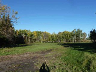 Photo 4: Hwy 827 Twp Road 610: Rural Thorhild County Rural Land/Vacant Lot for sale : MLS®# E4152236